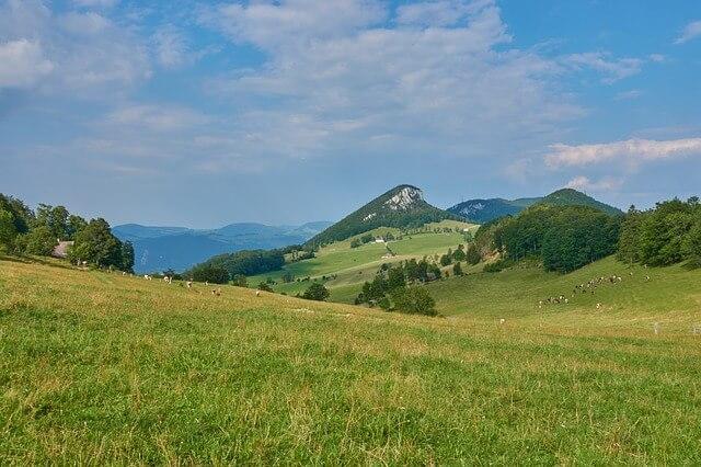Jura Krakowsko-Częstochowska - krajobraz